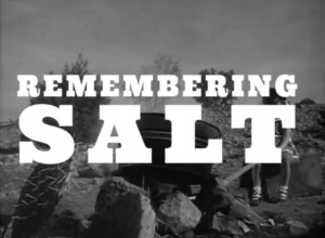 Remembering Salt title (1)
